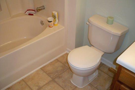 Master Bathroom Toilet Repair: Day 5