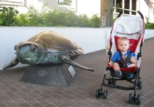 Using our Volo Stroller at the NC Aquarium in Pine Knoll Shores, NC