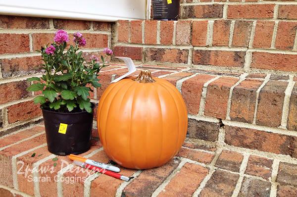Pumpkin Mums: Supplies