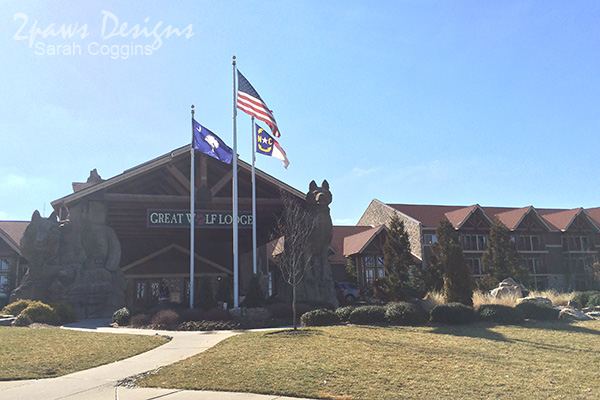 Great Wolf Lodge Concord: March 2015