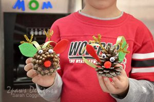 Christmas Nature Pal Exchange: Rudolph Pinecones