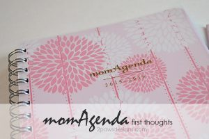 momAgenda Review: First Thoughts