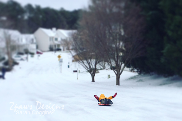 Project 52 Photos 2016: Week 4 - Sledding