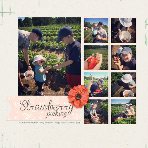 Mothers Day 2016: Strawberry Picking