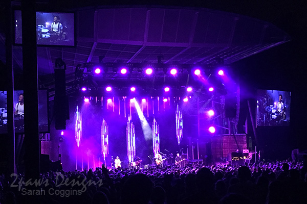 Project 52 Photos 2016: Lumineers Concert - Cary, NC