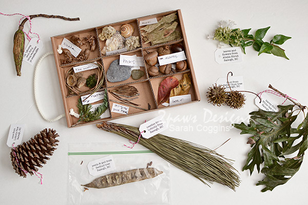 Nature Pal Exchange Collection - Fall 2016