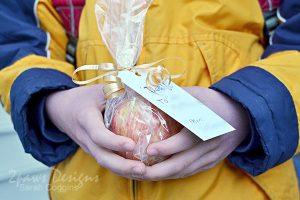 Teacher Appreciation Week: An Apple for the Teacher