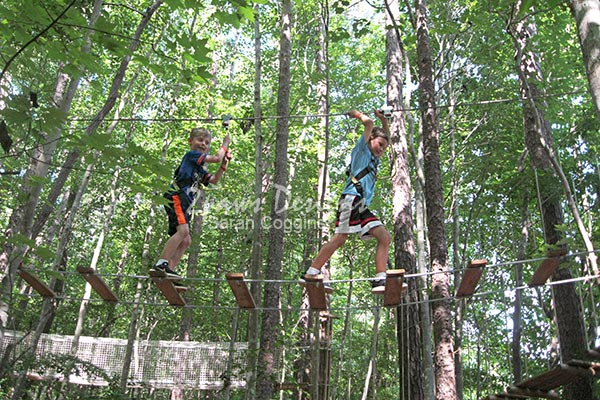 Go Ape Tree Top Birthday Party