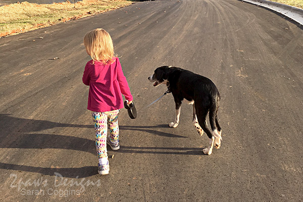 Walking our Senior Dog