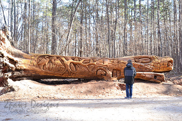Umstead State Park Chainsaw Art: Viewing