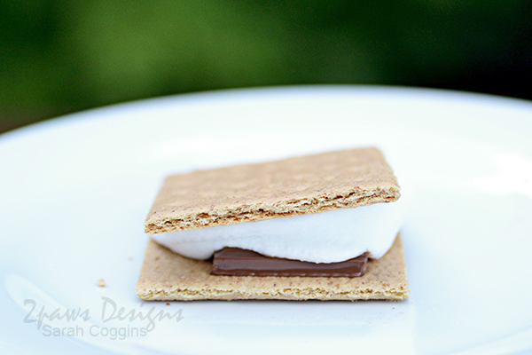 5 Fun S'mores Recipes