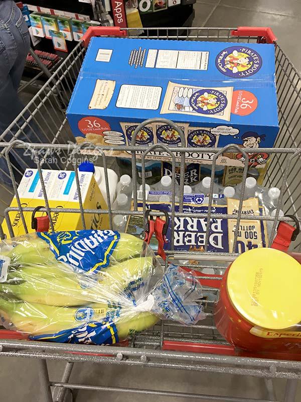 Hurricane Preparation: BJ's Shopping Cart